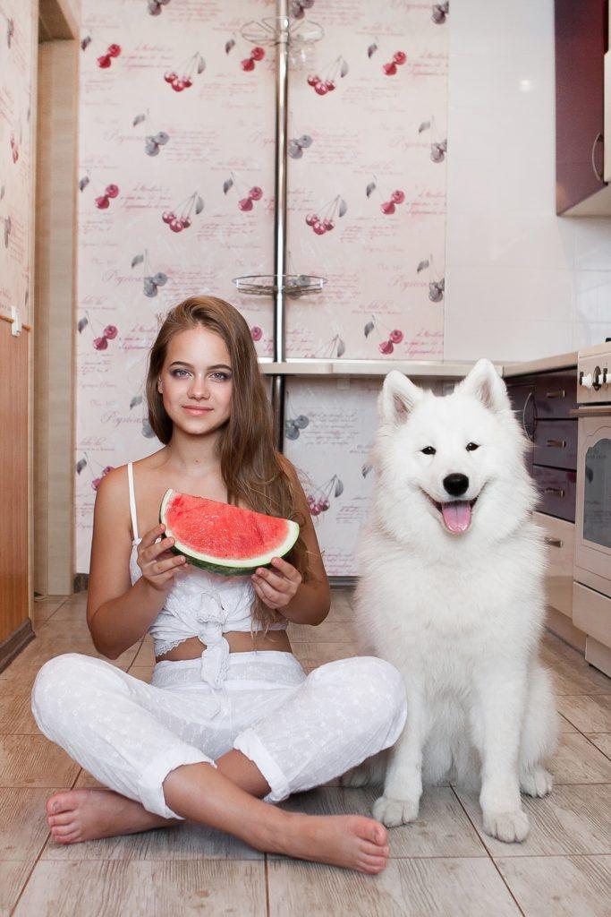можно ли давать собаке сахар