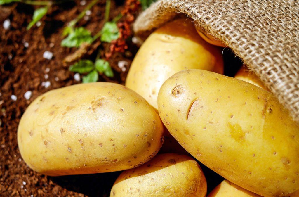 можно ли кормить собаку картошкой